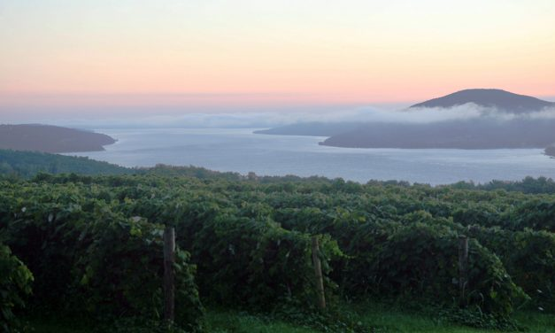 Finger Lakes Wine Trails
