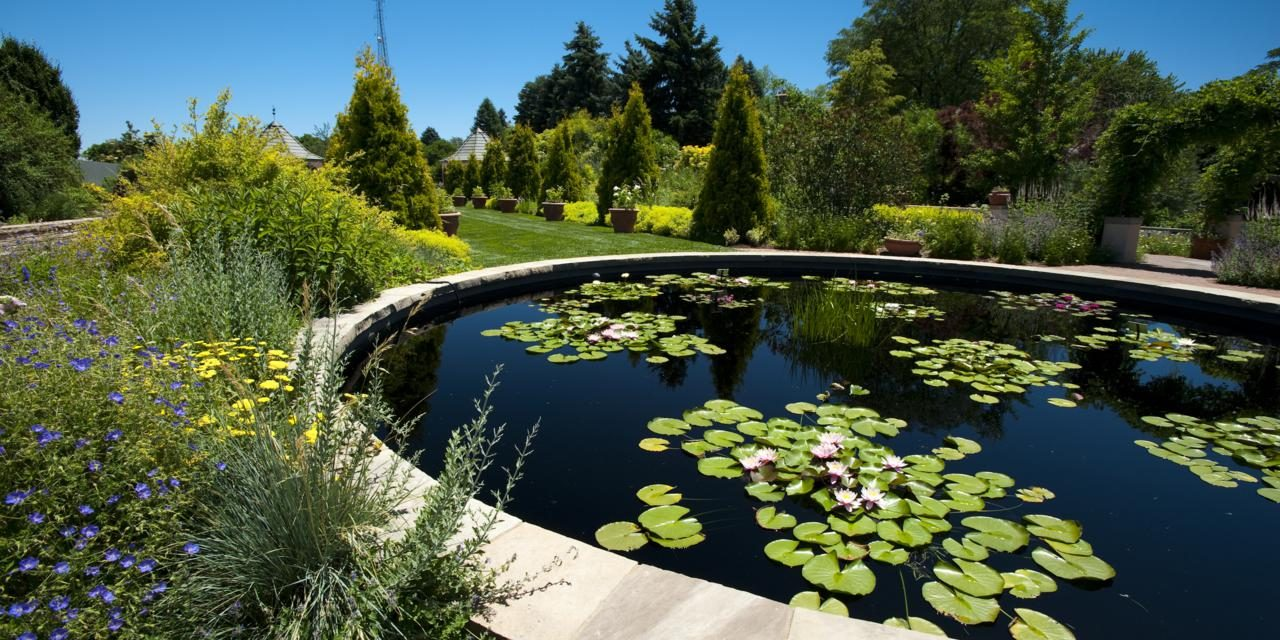 Colorado Botanical Gardens: Tips and Top Picks