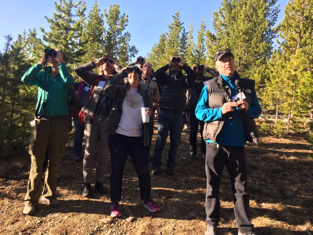 Birdwatching is a popular group activity at the Colorado State Parks.