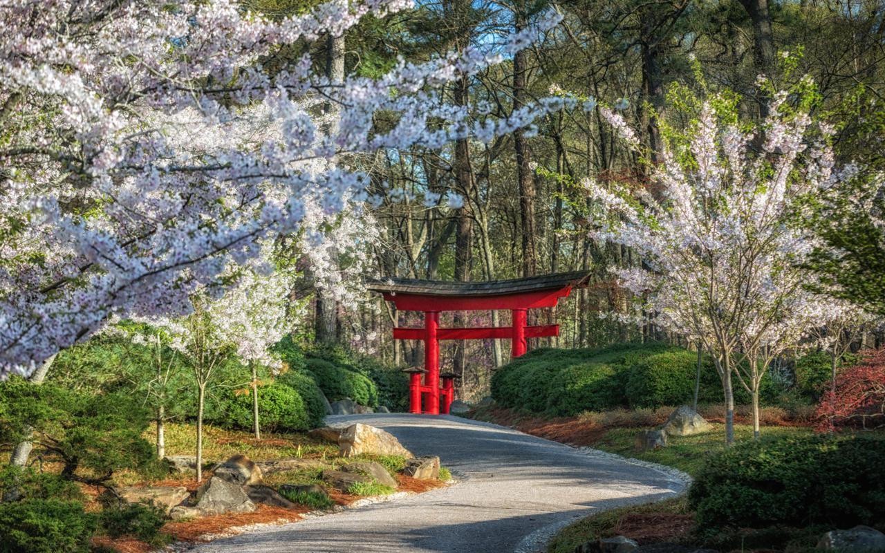 Botanical Gardens_ Credit - Art Meripol