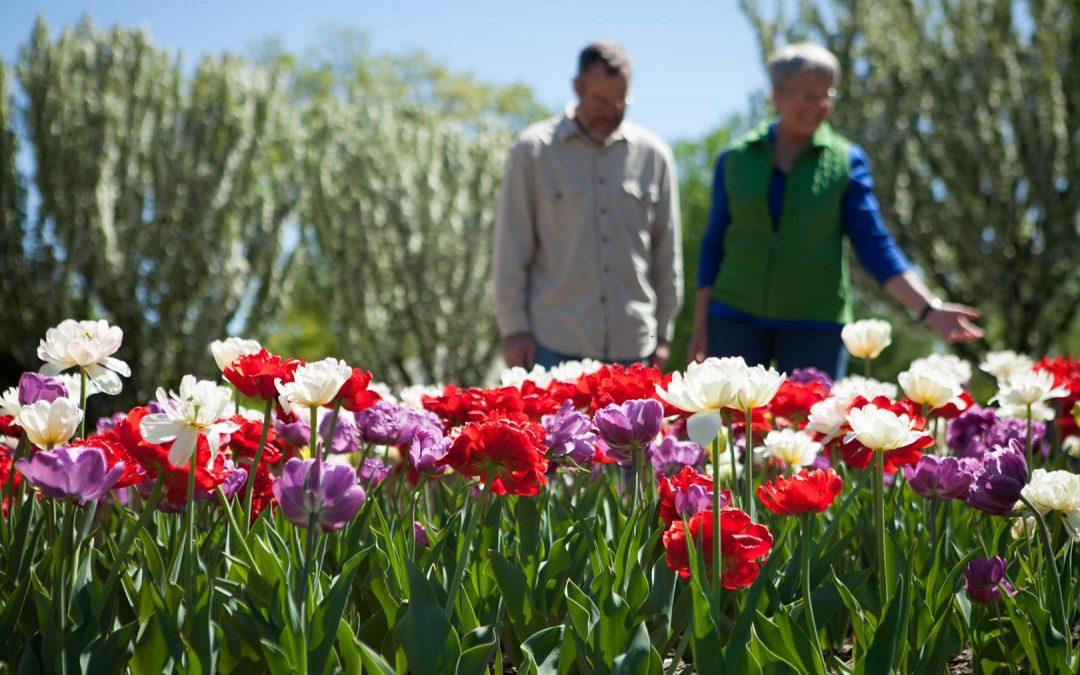 Green Bay Botanical Gardens-2013 5 23 In The Gardens-0006