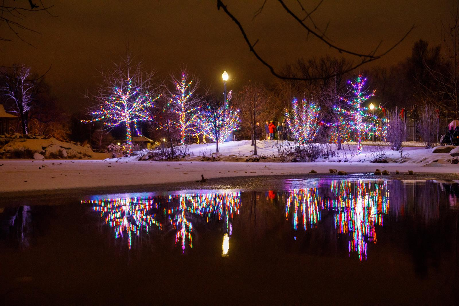 Wellfield Botanic Gardens Winter Wonderland Holiday Lights