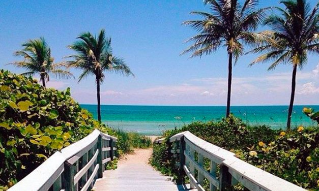 Hidden Gems in the Fort Myers, Florida Area