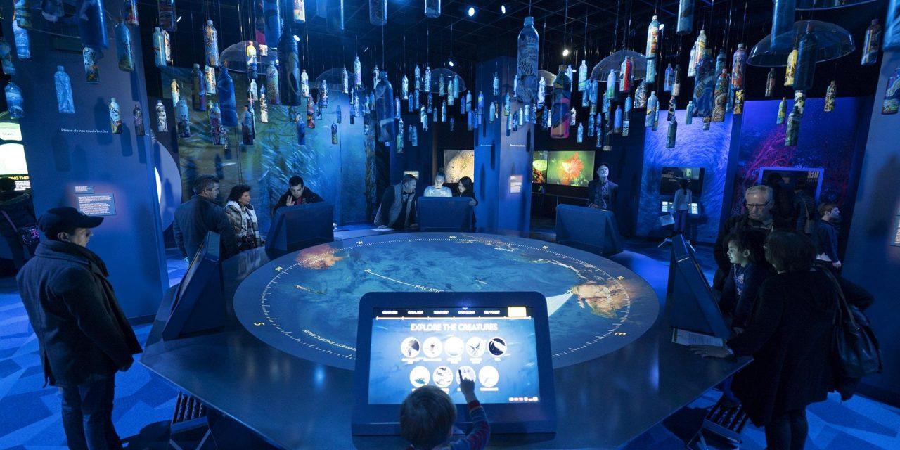 Museums Step into the Digital Era