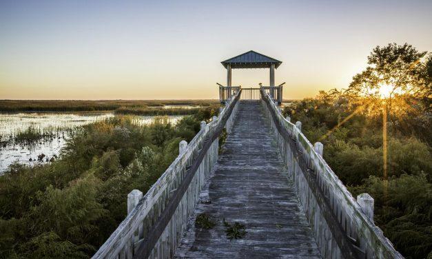 Uniquely Louisiana