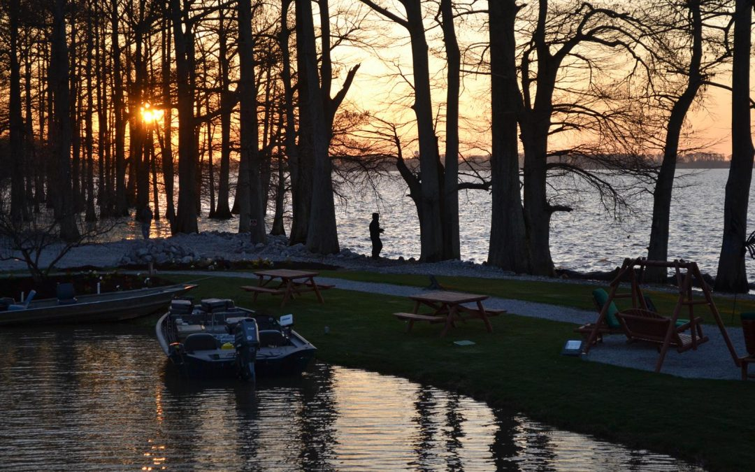On the banks of 15,000-acre Reelfoot Lake where there is camping, fishing and bird-watching.