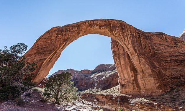 New Requirements for Commercial Tour Operators Visiting U.S. National Parks.