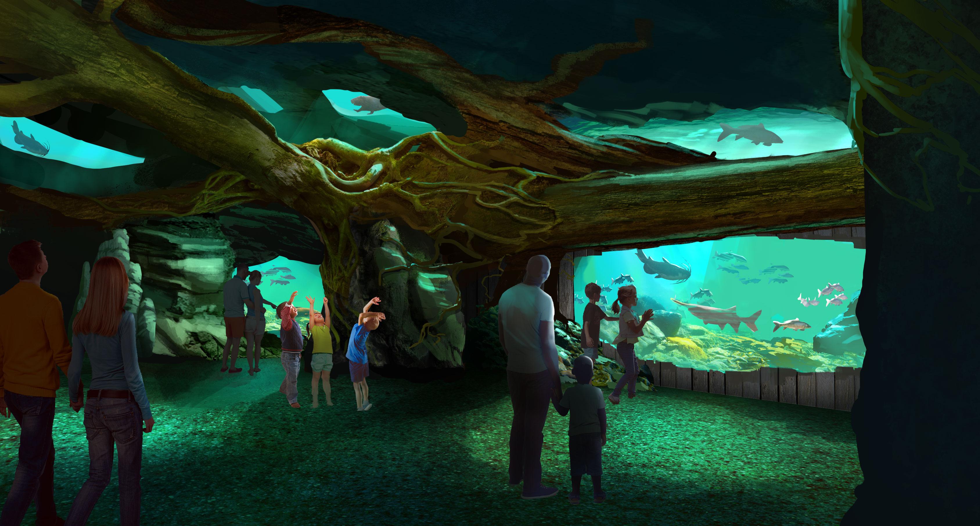 St. Louis Aquarium 75976_MississippiRiverExhibit_20170809