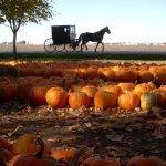 The Ultimate Guide to Northern Indiana Amish Country