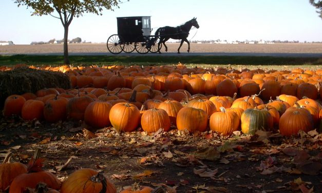 Illinois Amish Country & Beyond
