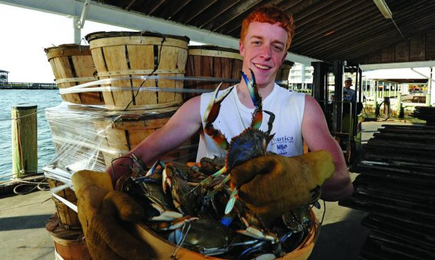 Relish in the Groaning Board That is Chesapeake Bay