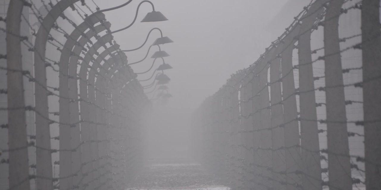 Holocaust and Homeland Horrors