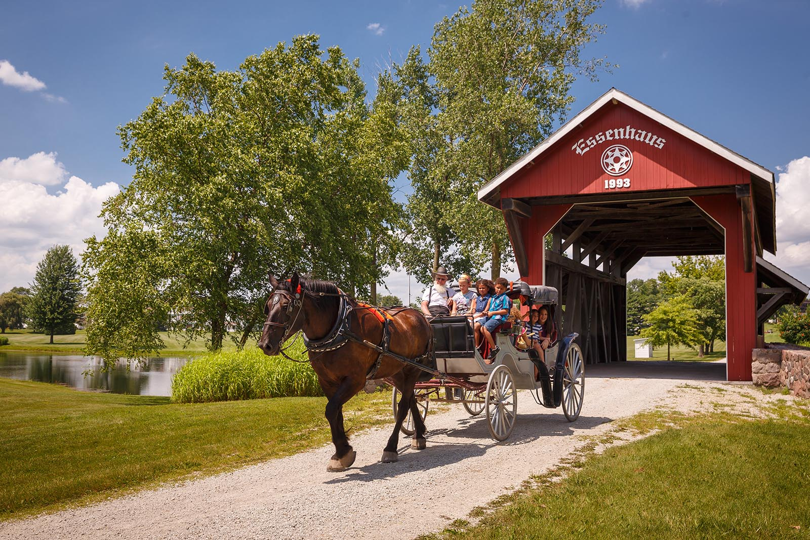 Buggy ride in Amish Country of Northern Indiana