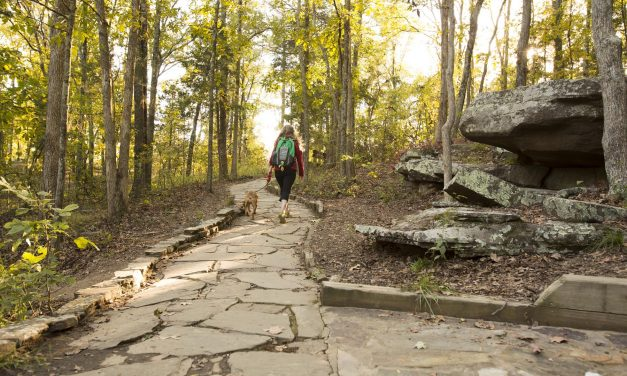 Enjoy Illinois' Outdoor Wonders