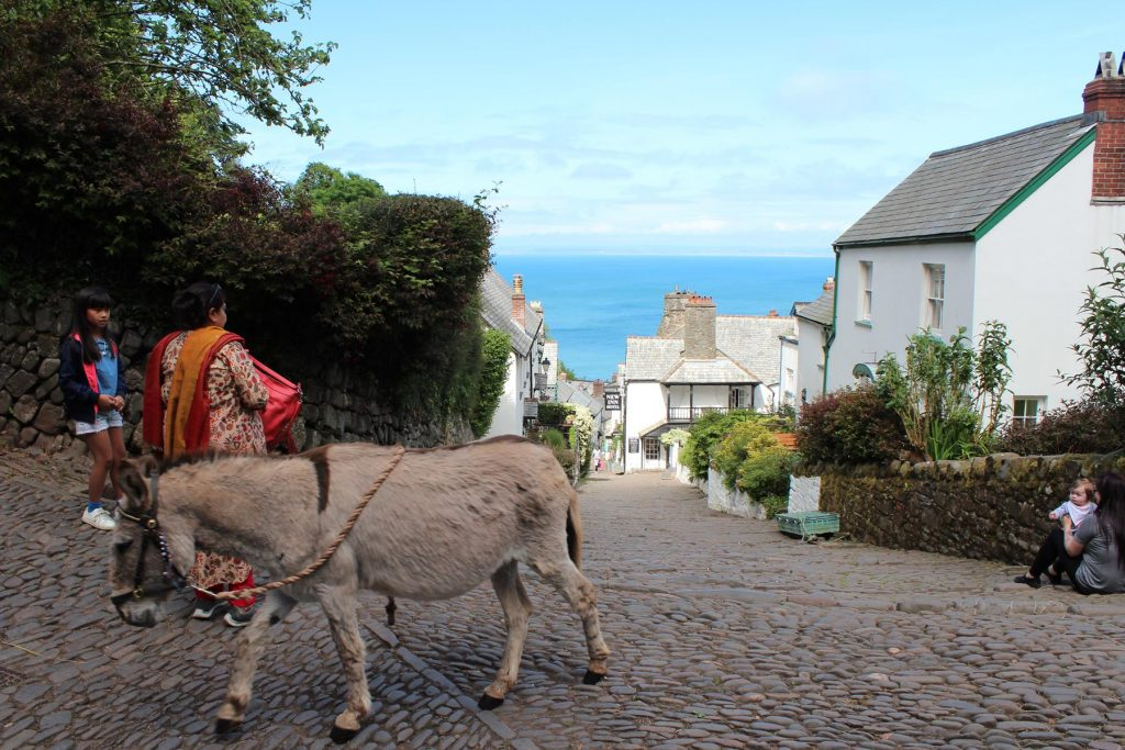 Clovelly.Devon.donkeys.provide.transportation.assistance