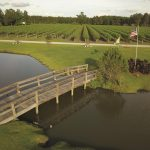 Must-Visit North Carolina Agritourism Experiences