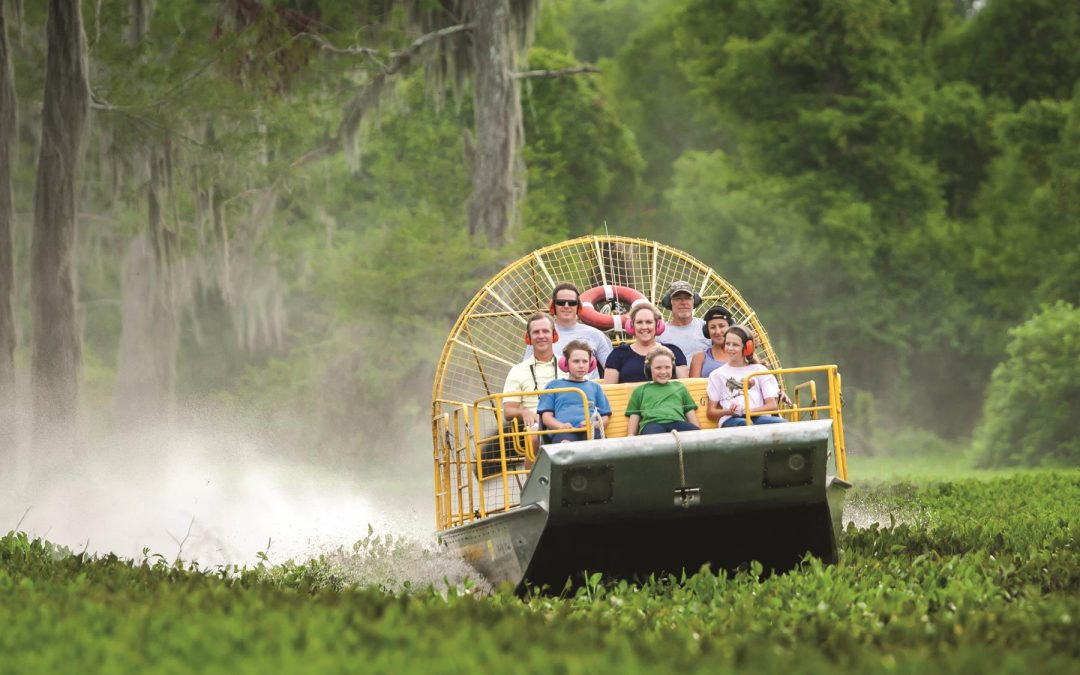 Tourists ride an airboat through the cypress forest of Henderson Swamp - outdoor adventure