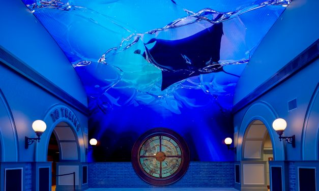 St. Louis Aquarium at Union Station Brings New Life to Downtown