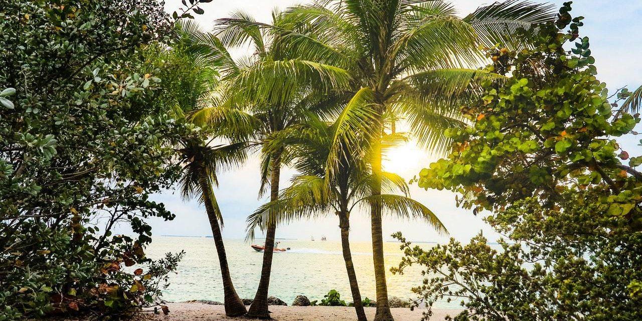 Group Visits On-board a Florida Keys Boat Rental
