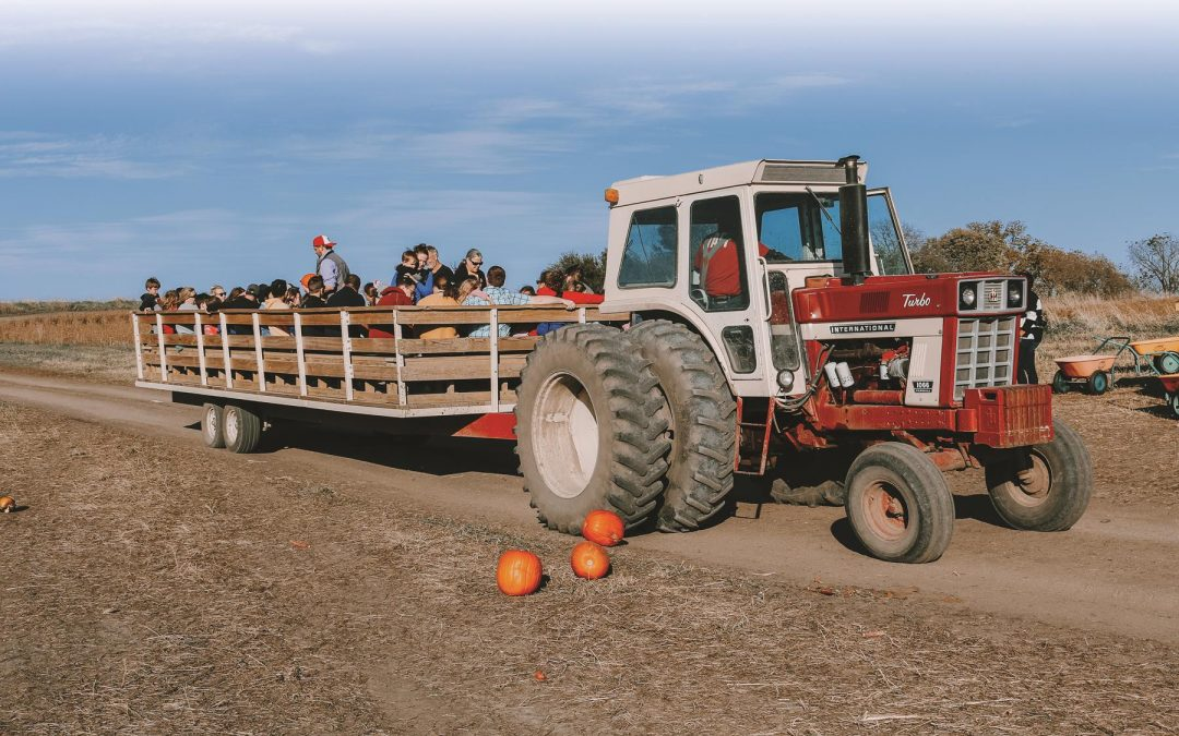 Agritourism Replacement