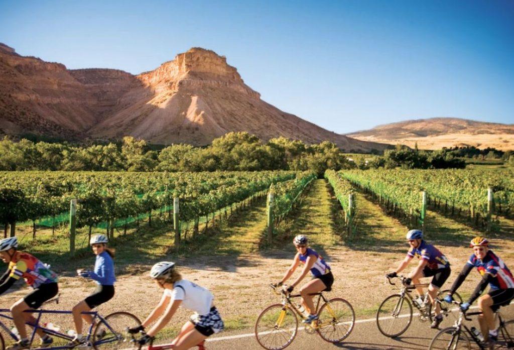 Dinosaur Diamond Grand Junction Wineries