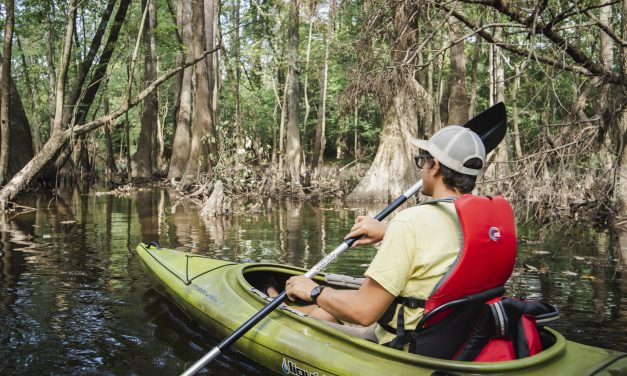 Paddle Your Way Through North Carolina